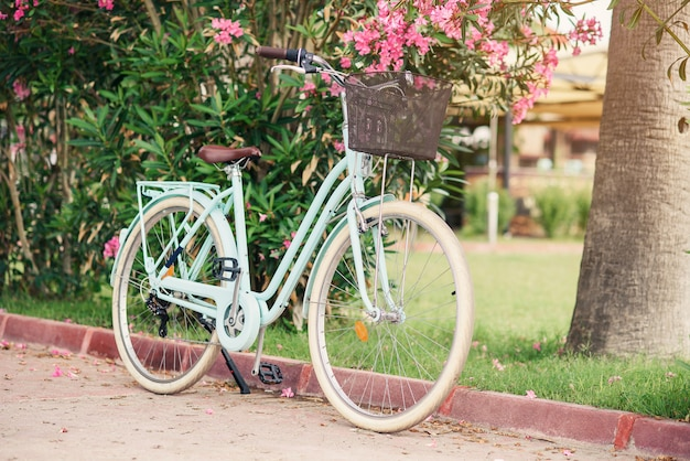 緑の茂みとピンクの花に対して女性のビンテージ自転車。路上駐車のバスケットが付いているスタイリッシュなレトロな自転車。