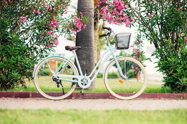 Women vintage bicycle against green bushes and pink flowers. stylish retro bicycle with the basket parked on the street.