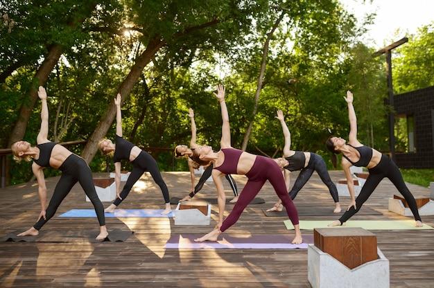 Женщины с идеальным телом делают упражнения на растяжку, групповые занятия йогой на траве в парке