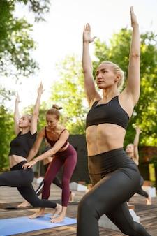 Женщины с идеальным телом на групповых занятиях йогой в летнем парке