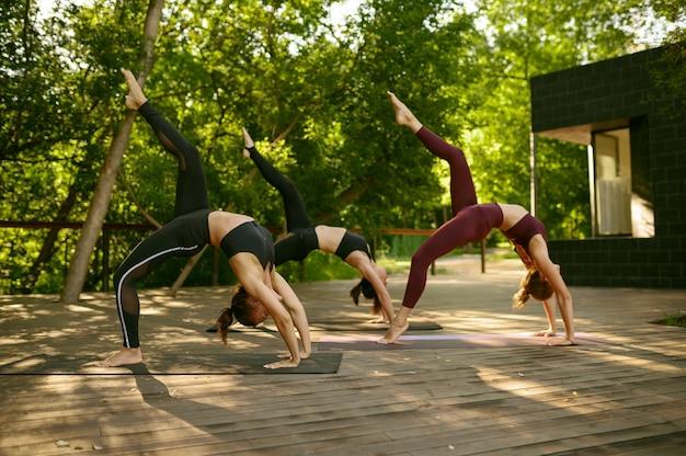 公園で晴れた日にグループヨガトレーニングでスリムな体の女性