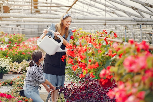 Women working in a greenhouse with a flowerpots