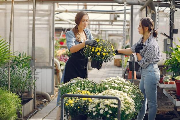 Женщины, работающие в теплице с вазонами