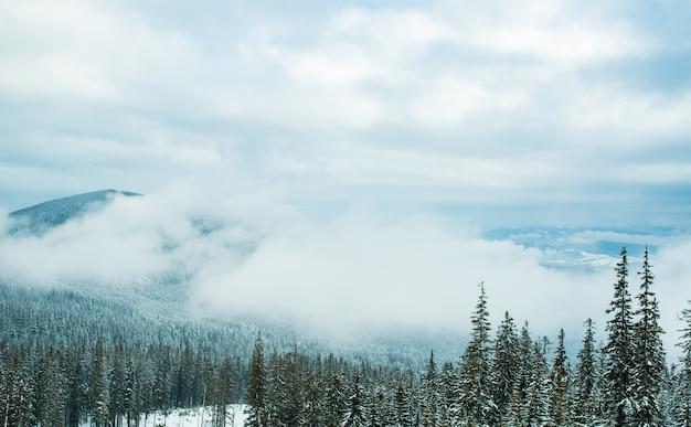 Прекрасный чарующий вид на высокие заснеженные горы и лес в солнечный зимний день.