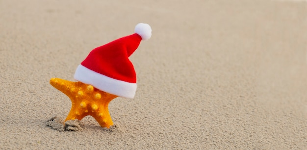 Wonderful christmas on the beach, starfish in a claus hat