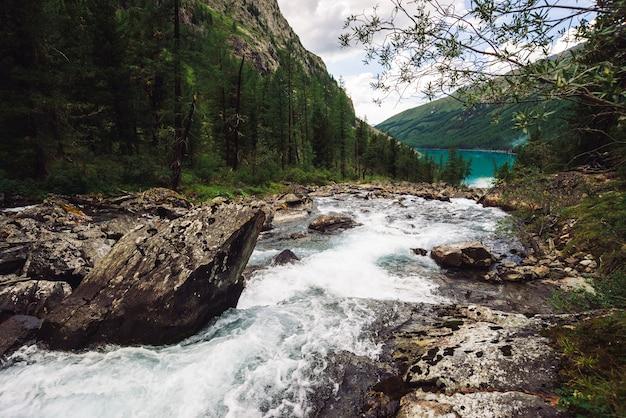 野生の高原の小川の素晴らしい速い水流が湖に流れ込みます。