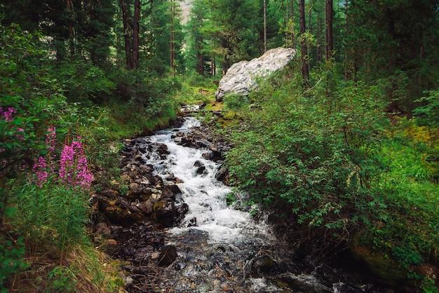 야생 산 개울에서 멋진 빠른 물 흐름. 놀라운 경치 좋은 녹색 숲 풍경.