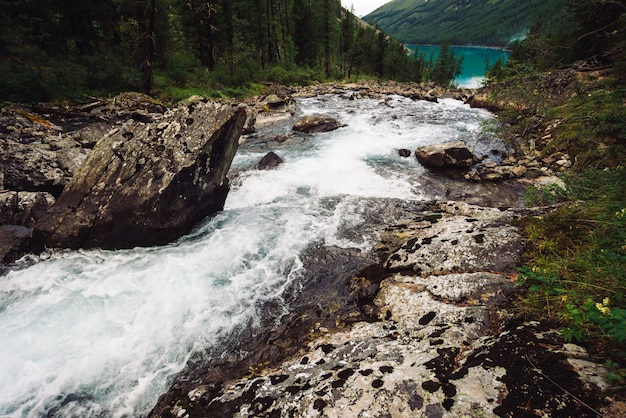 Wonderful fast water stream in wild highland creek flow into lake
