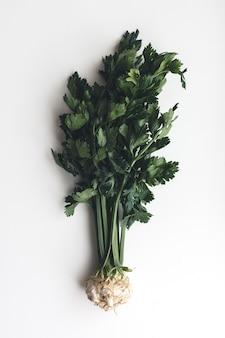 Wonderful healthy fresh celery on a white background