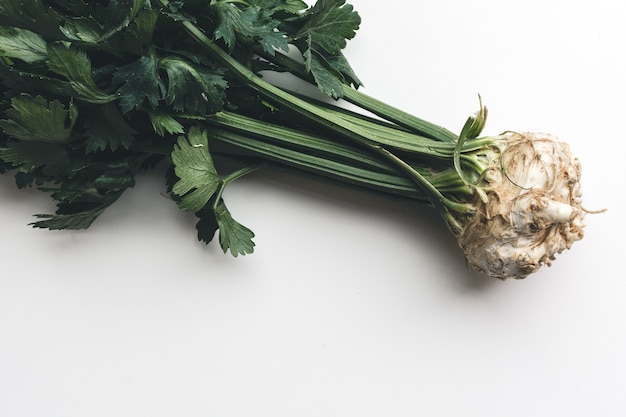 Wonderful healthy fresh celery on a white background