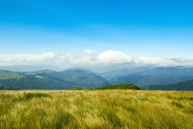 Wonderful landscape of ukrainian carpathian mountains.
