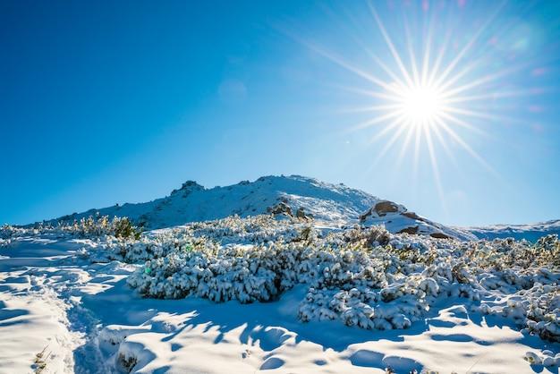 카르 파티 아 산맥의 커다란 바위 선반이있는 첫 눈으로 뒤덮인 멋진 풍경