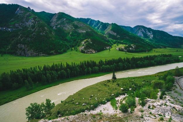 Прекрасные горы с лесным покровом. богатая растительность в горной местности. удивительный ландшафт величественной природы с горной рекой.