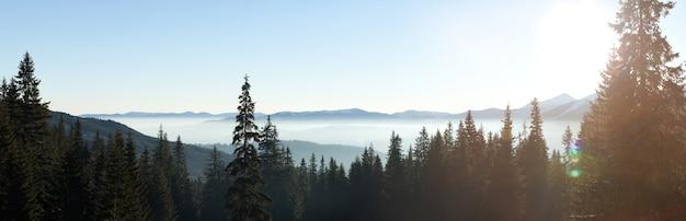 멋진 별이 빛나는 하늘은 언덕과 나무가있는 산들 사이에있는 스키 리조트의 그림 같은 전망 위에 있습니다. 겨울 휴가 개념. 텍스트 배치