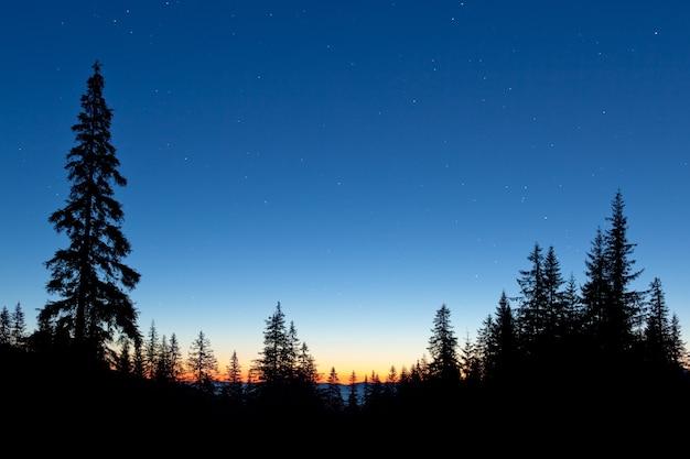 素晴らしい星空が美しい景色の上にあります