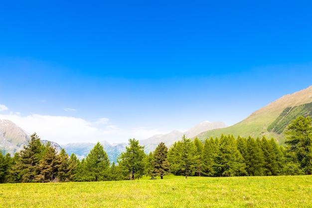 夏の日の森を背景にしたイタリアアルプスの素晴らしい景色。ピエモンテ地方-北イタリア。