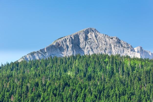 モンテネグロの山々の素晴らしい景色