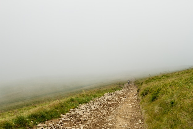 Wonderful view of ukrainian carpathian mountains in fog.