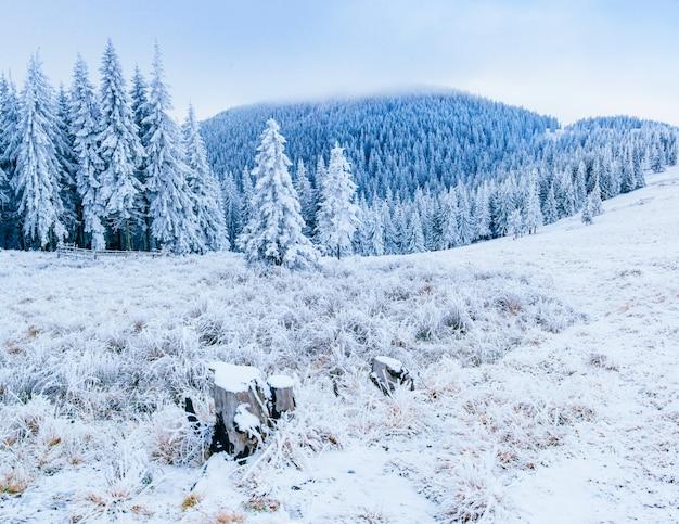 멋진 겨울 풍경