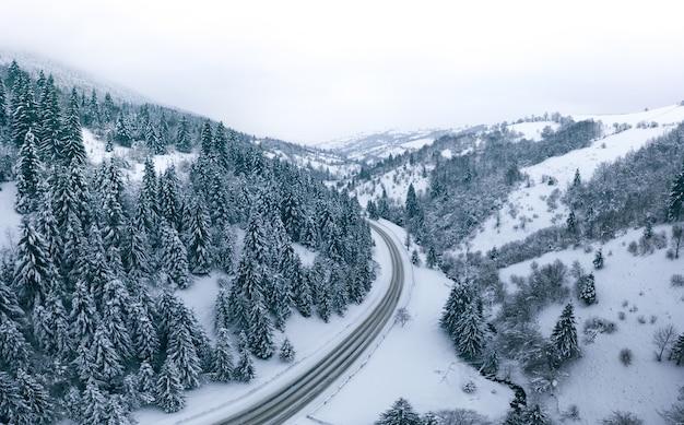 멋진 겨울 산 풍경, 눈 덮인 산길, 그리고 숲이 수평선으로 향합니다.