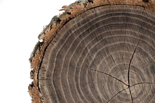 Деревянный фон старая деревянная поверхность среза дуба подробные теплые темно-коричневые и оранжевые тона