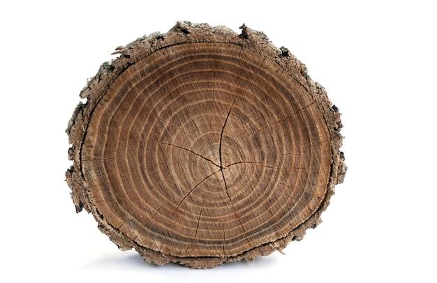 Деревянный фон старый деревянный дуб срез поверхности изолировать на белом грубая органическая текстура