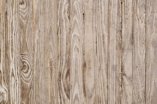 Wood background texture with space for your text