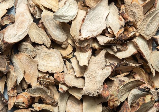 Wood bark texture - close-up