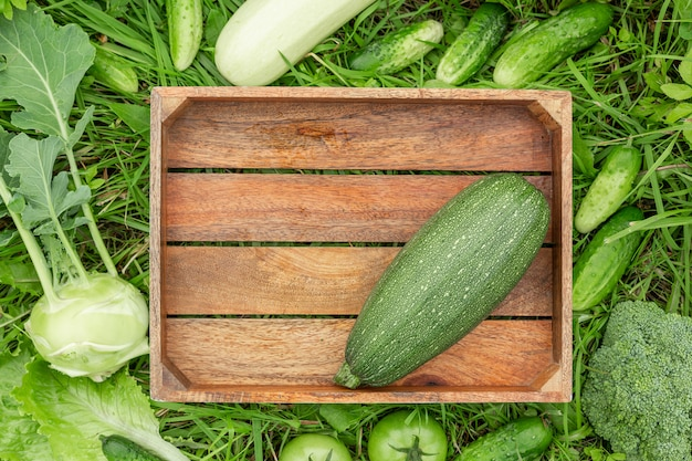 Wood box and green vegetables on the grass healthy eating concept harvesting