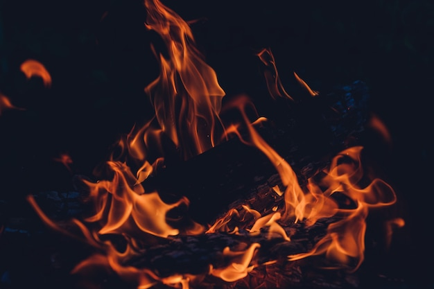 The wood burning in the fire of the furnace.