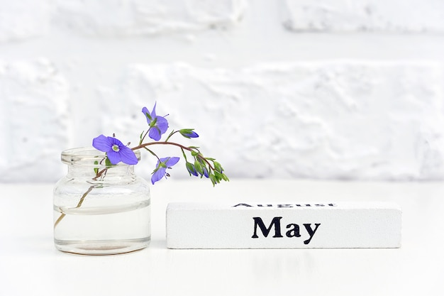 Wood calendar spring month may and blue flower in bottle vase on table background white brick wall