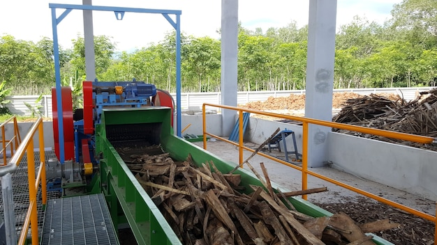 Wood chipper process  wood transport by conveyor belt to wood chipping machine