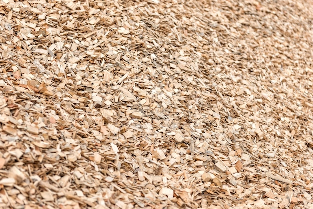 Wood chips and sawdust pile