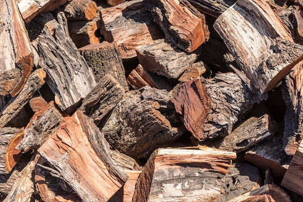 Wood chips with bark outdoors