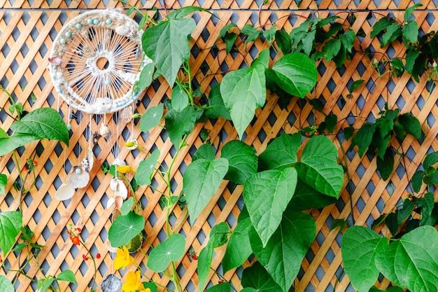 Деревянный забор с вьющимися растениями и ловцом снов на балконе, садовая веранда, современная терраса.