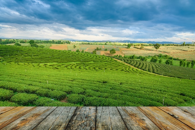Wood floor on tea farm