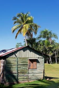 카리브 해변에서 나무 집