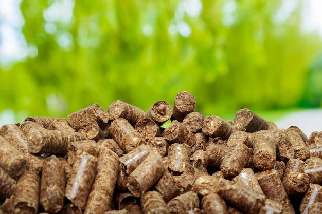Wood pellets on a green . biofuels.