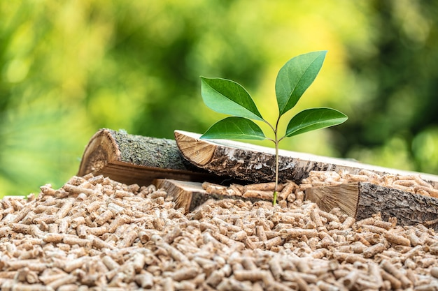 Wood pellets with leaf and tree trunks. concept of eco-sustainable fuel.