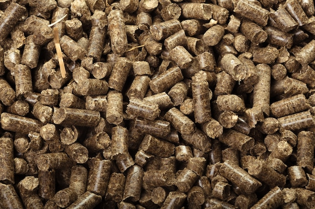 Wood pellets in the .