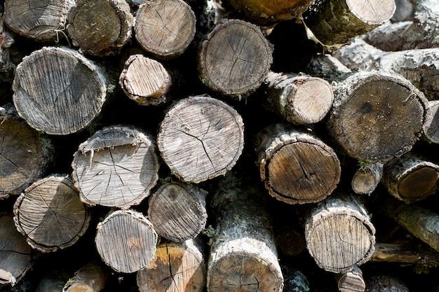 Wood pile background