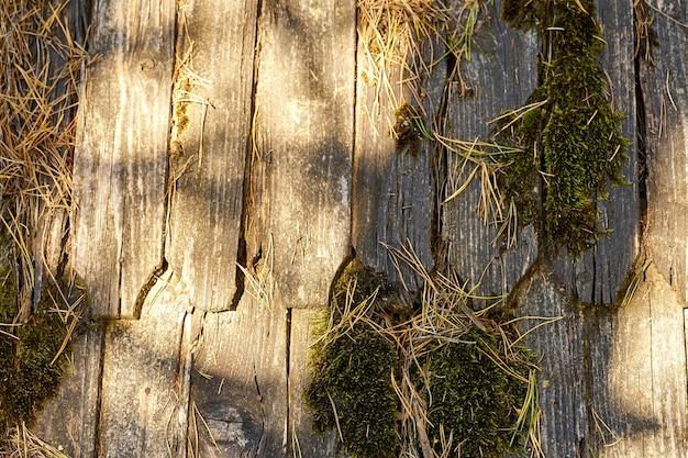 Текстура деревянной крыши. текстура деревянной плитки с мхом