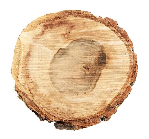 白で隔離される木の丸いスライス