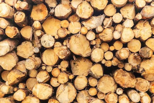 Wood of round timber stacked in a pile at the sawmill. close-up. background