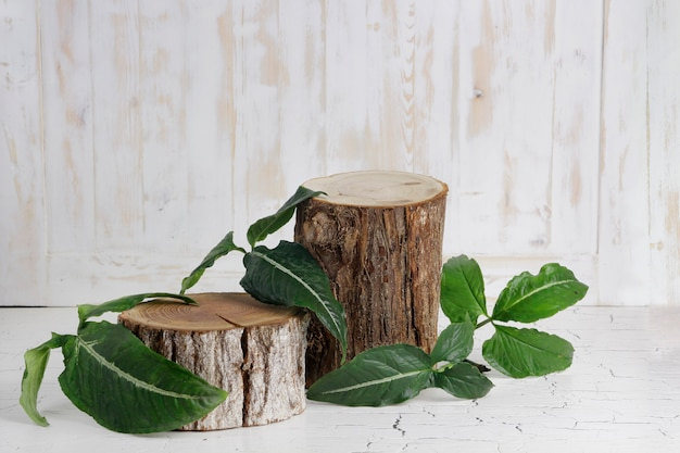 Wood slice podium with leaves and wood texture background