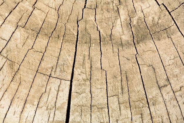 木構造、抽象的な背景。スペースをコピーします。ひびの入った古い木を乾燥させます。年輪を示す木製の断面図。