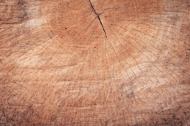 パターンの背景を持つ木の切り株のテクスチャ