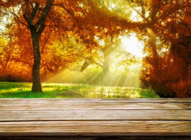 Wood table in autumn landscape with empty space.