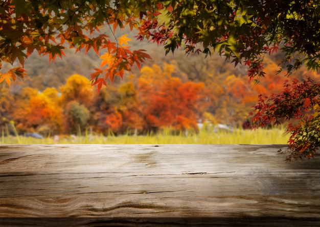 Wood table background in autumn landscape with empty space.
