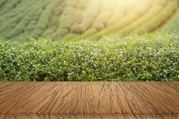 Wood table background tea plant